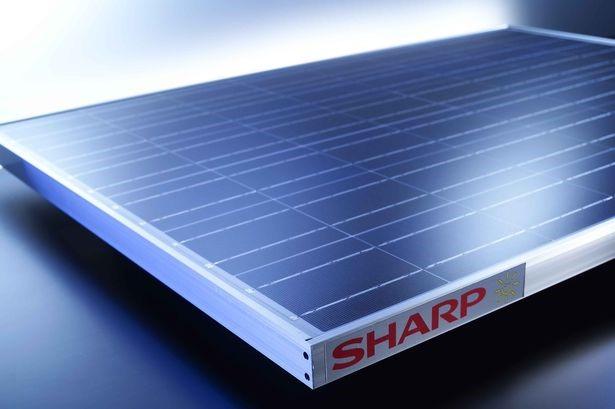 sharp napelem